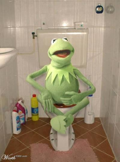 Kermit on the toilet
