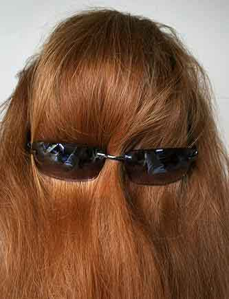 Chewbacca in Disguise
