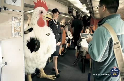 Chicken on Airplane