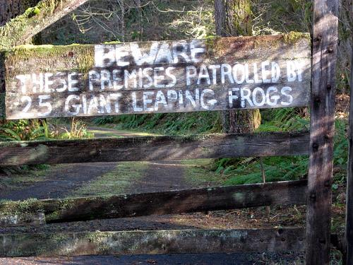 Giant Frog Sign