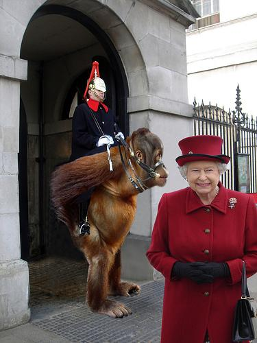 Queen with monkey guard